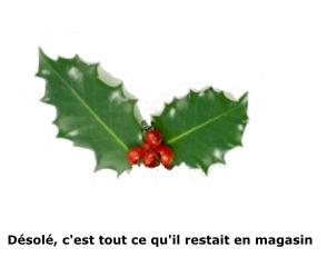 Voeux de Pierre C.J. Vaissiere - houx